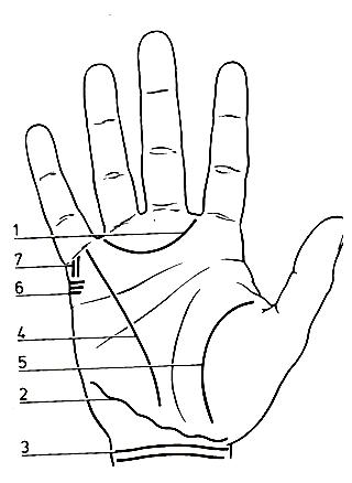 Voyance par les lignes de la main